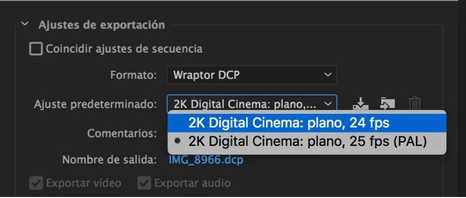 Formato de exportacion Wraptor DCP