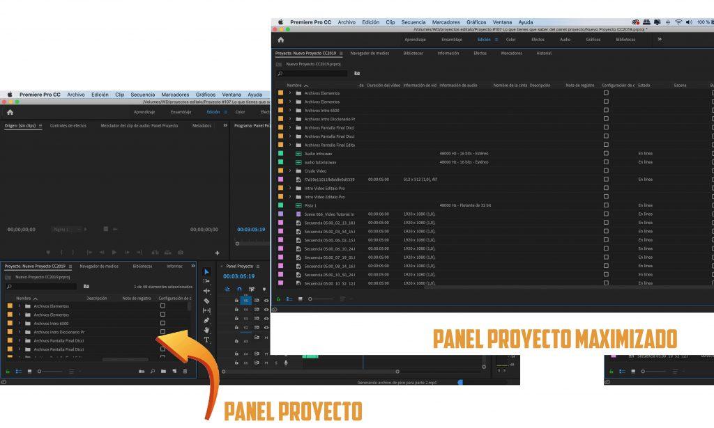 Panel proyecto maximizado editalo pro